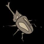 カブトムシ1