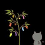 笹を眺める猫
