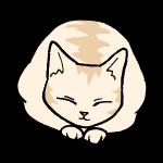 丸まっているネコ