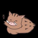 眠るイノシシ