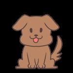 耳がたれた犬