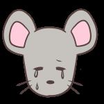 泣くネズミ