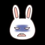 怒るウサギ