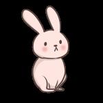 遠くを見ているウサギ