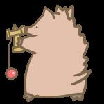 けん玉と猪