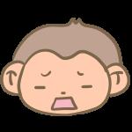 がっかりな猿の顔