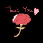 「 Thank You 」文字とカーネーション