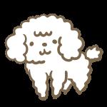 モフモフした犬(白)