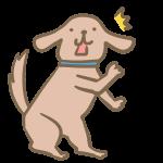 びっくりする犬