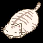 デブなトラ猫