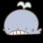 かわいいクジラ