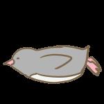 滑るペンギン