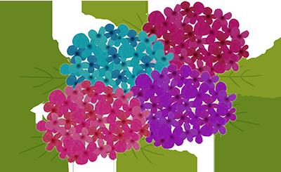 すべての講義 紫陽花の絵 : ... 画像【紫陽花】 - NAVER まとめ