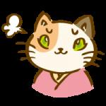 着物を着た三毛猫5