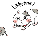 2013年最後に獲物(ネズミ)を追ういくら(猫)
