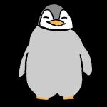 ペンギンヒナ1