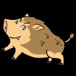 猪決めポーズ