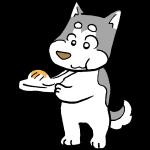 お餅を食べる犬