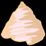 貝殻その2