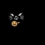 首輪を付けた黒猫