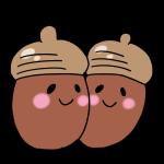 2つのドングリ