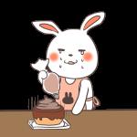 ケーキ作りを失敗するウサギ