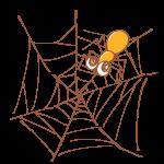 蜘蛛の巣と蜘蛛