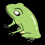 横向きカエル
