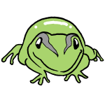 正面カエル