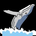 海をはねるクジラ