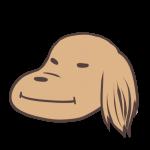 ドヤ顔の犬