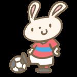 ウサギのサッカー(赤)