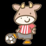 牛のサッカー(赤)