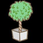 観葉植物(4)