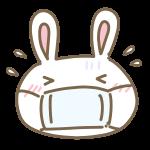 風邪をひいたウサギ
