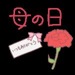 「 母の日 」文字とカーネーションと手紙