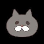 グレーの猫