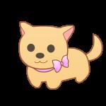 リボンの首輪の犬