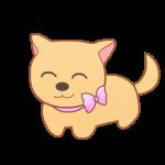 リボンの首輪の犬(笑顔)