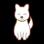 白い犬(笑顔)