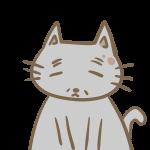 年老いた猫