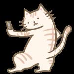 自撮りする猫