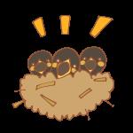 ツバメの巣と雛たち