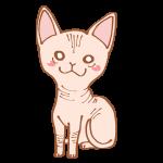 猫のスフィンクス
