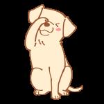 フェイスをする犬