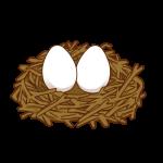 卵が入った鳥の巣