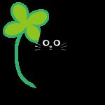 クローバーと黒猫