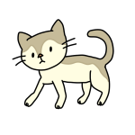 歩いてる猫