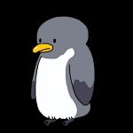 大人のペンギン