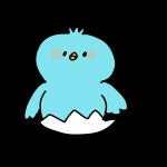 青いヒヨコ